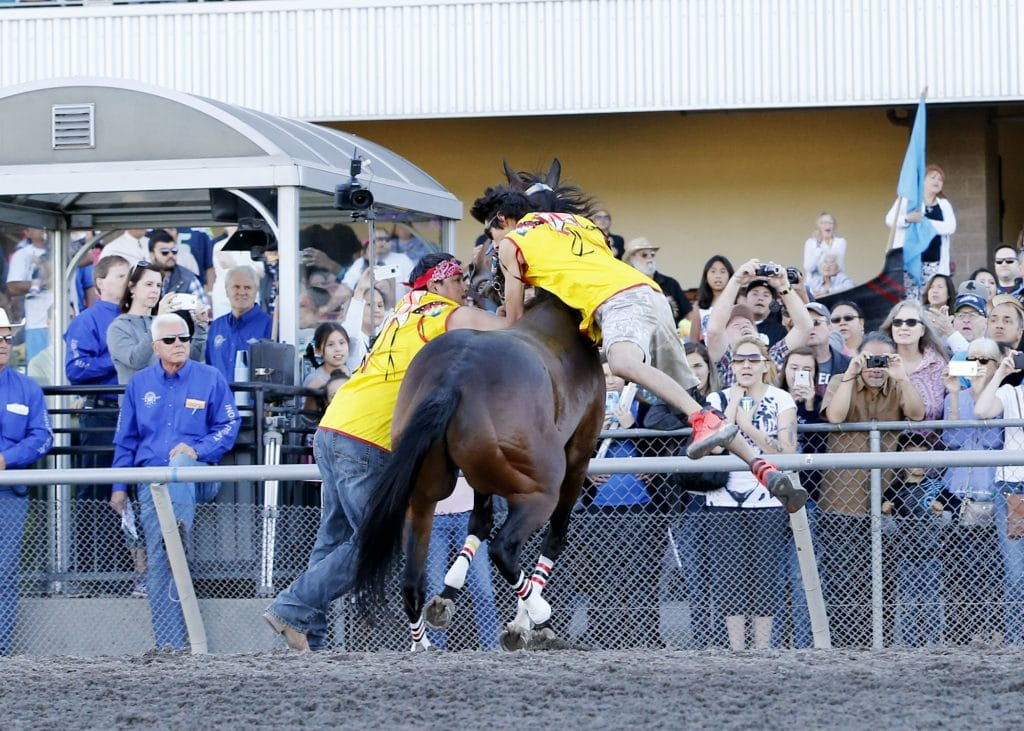 Carlson Relay Captures Muckleshoot Gold Cup - Emerald Downs