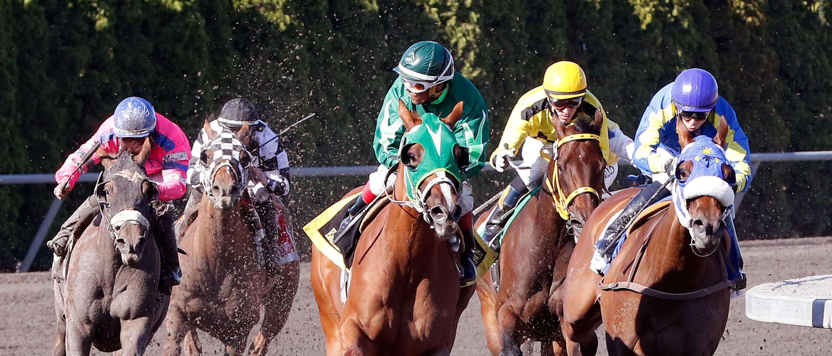 Emerald Downs Racing