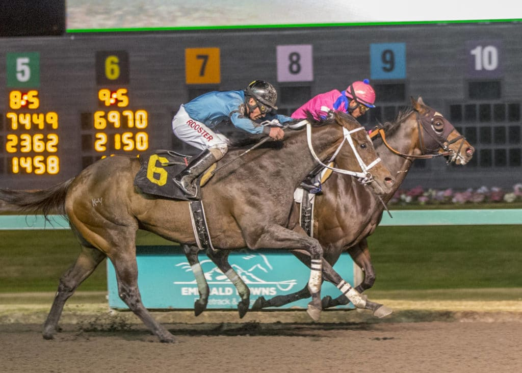 Emerald Downs Wrap-Friday, June 14 - Emerald Downs on wire holder, wire nut, wire leads, wire cap, wire connector, wire lamp, wire antenna, wire sleeve, wire clothing, wire ball,